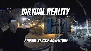 Virtual Reality Animal Rescue  immersive 360 Video Experience [4k]