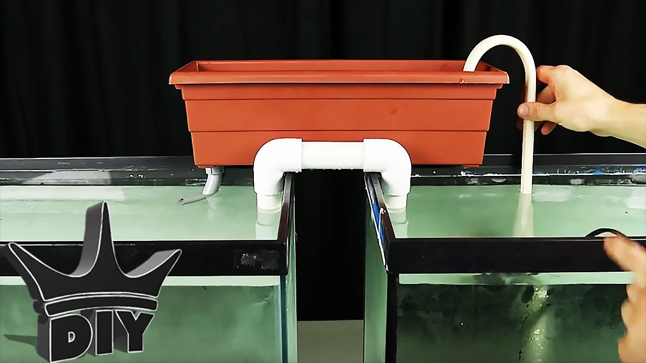 How to filter 2 aquariums with 1 filter for 10 tutorial for How to make a fish tank filter