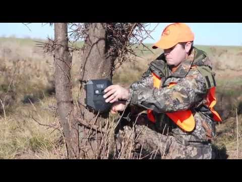 The state of deer and deer management in Oklahoma