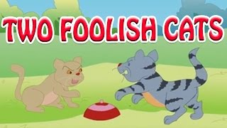 Two Foolish Cats - Moral Story for Kids