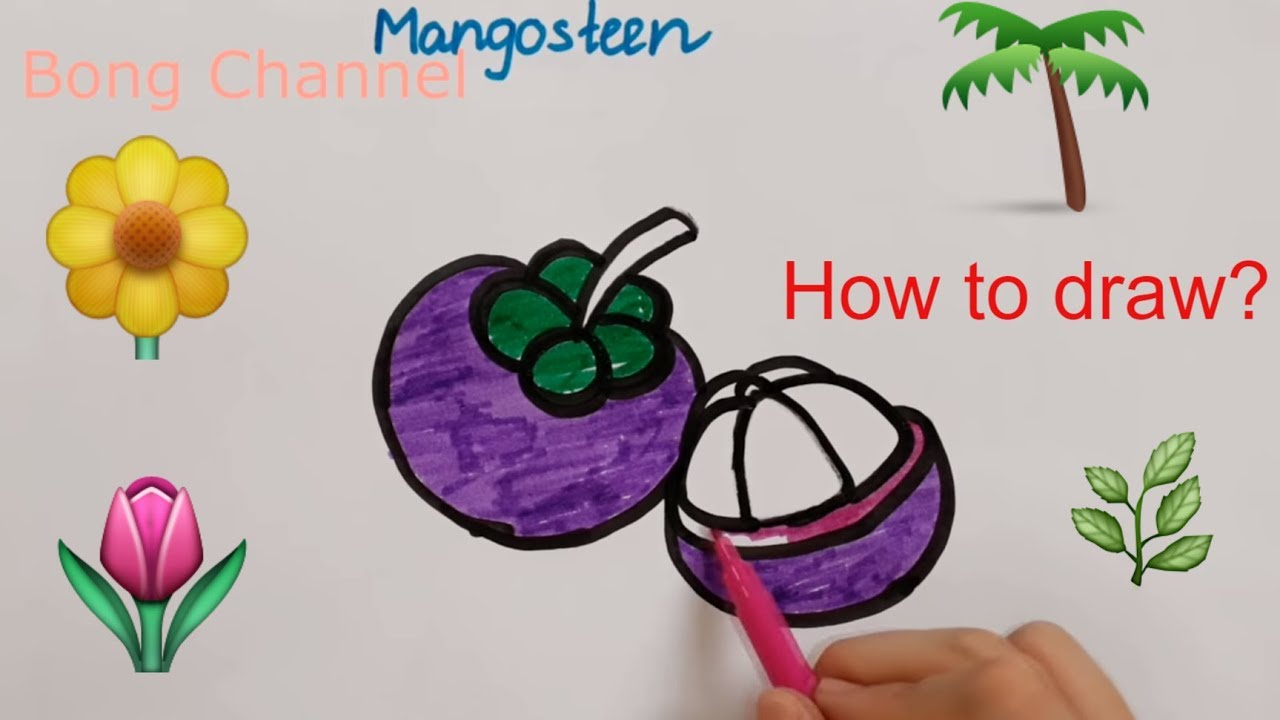 How To Draw Radish Mangosteen Drawing For Kids Bong Channel