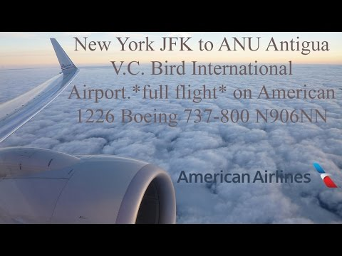 JFK to ANU *full flight* on American Airlines AA1226 Boeing 737-800 N906NN
