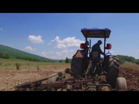 The story behind Farm Aid
