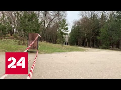 Пикники и шашлыки: карантин в Москве начали соблюдать не все - Россия 24