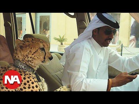 Las 20 Extravagancias más Grandes de Dubai - Parte 2