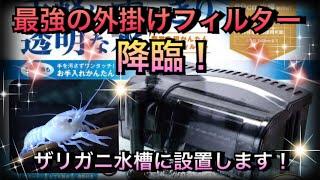【アクアリウム】最強の外掛けフィルター降臨!【コトブキ プロフィットフィルター Big】 thumbnail