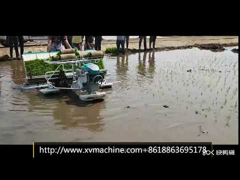 Rice Transplanter Price