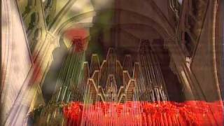 J.S. Bach: Actus Tragicus, Sinfonia -- Thilo Muster in Geneva Cathedral