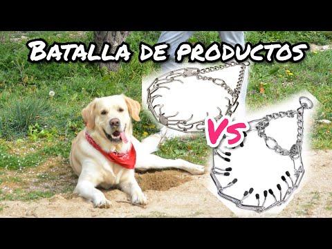 COLLARES DE PINCHOS - BATALLA DE PRODUCTOS - PRONG COLLAR