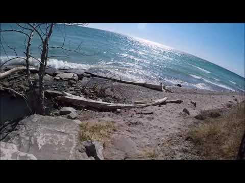 Uncut Guildwood waterfront