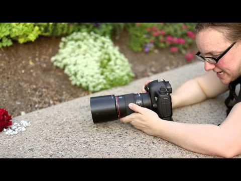 Macro/Ring Shot Tips - YouTube