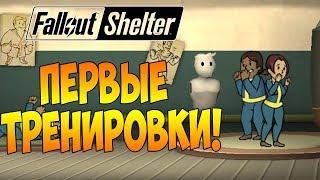 ПЕРВЫЕ ТРЕНИРОВКИ! РЕЙДЕРЫ С ОГНЕСТРЕЛЬНЫМ! | Fallout Shelter [ВЫЖИВАНИЕ] #3