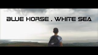 SKILDA - BLUE HORSE WHITE SEA