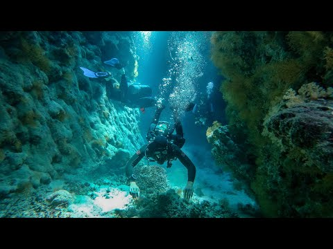 Liveaboard Trip with Red Sea Explorers - 4K