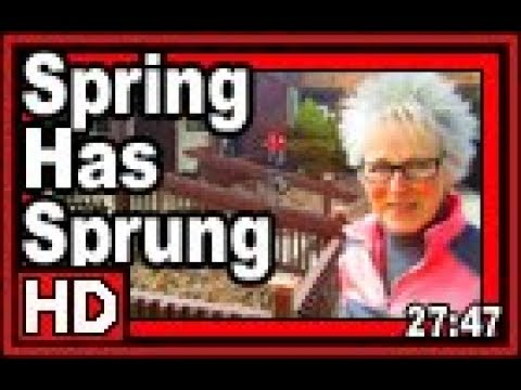 Spring Has Sprung Maybe - Wisconsin Garden Video Blog 817