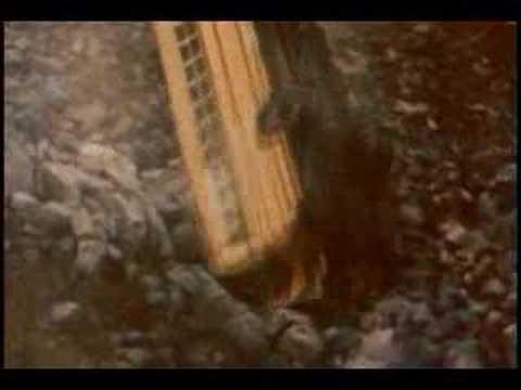 American school bus crash over cliff