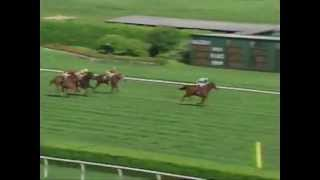 Fourstardave - 1994 Saratoga Allowance