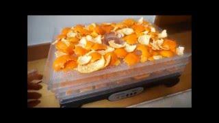 신일 식품건조기 감귤말랭이 만들기