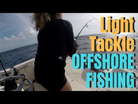 South Florida FISHING GIRL:  Light Tackle Offshore Fishing