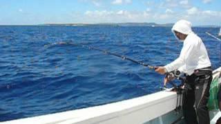 沖縄 ヤマトナガイユー つむぶり 泳がせ釣り