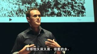 TED Talks - 怎麼尋找你熱愛的工作? Video