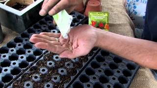 Organic Mechanics Soil Co. Presents // Planting Seeds! With Seed Starting Blend