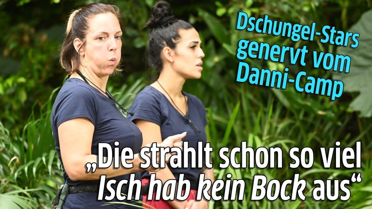 Dschungelcamp 2020 Tag 5 Danni Buchner Strahlt Isch Hab Kein Bock Aus