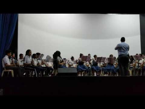 Basilian school in Cali Colombia, INSA, has a wonderful orchestra.