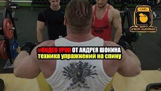 Видео урок от Андрея Шокина  (Тренировка спины, толщина спины)