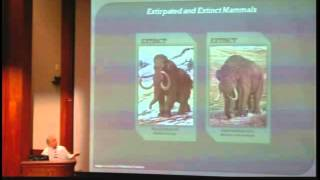 Sloths, Mammoths, and Saber-toothed  Cats: The Ice Age Mammals of Alabama