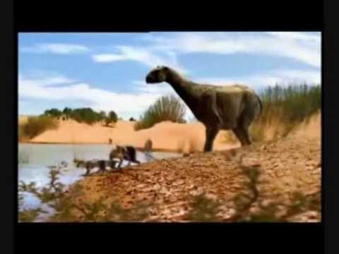 jean-michel-jarre-&-rondo-veneziano-fruchremix---evolucion