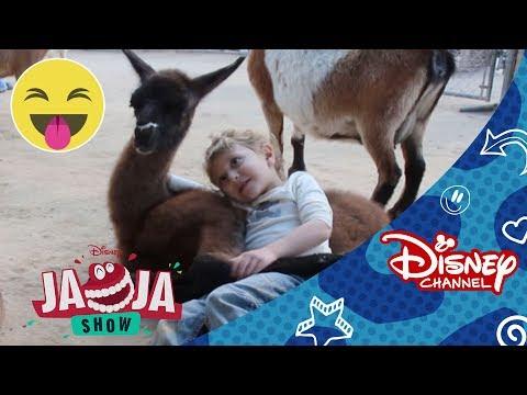 Disney Channel España | Lo Mejor de JaJa Show 47