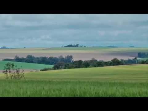 Curitiba Travel Video