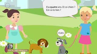 Szólalj meg! – franciául, 2017. március 21.