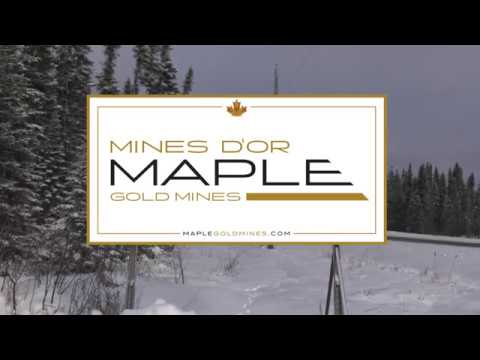Maple Gold Mines - District Scale Gold Potential at Douay