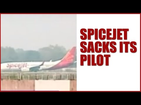 SpiceJet Sacks Pilot For Forcing Air Hostess To Sit With Him