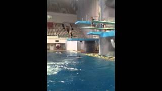 Прыжковая ванна Олимпийского. 3 метровая