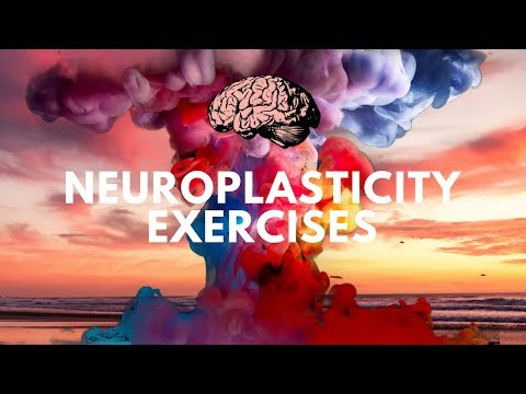 Neuroplasticity Exercises Course | Rewire Your Brain with Neuroplasticity