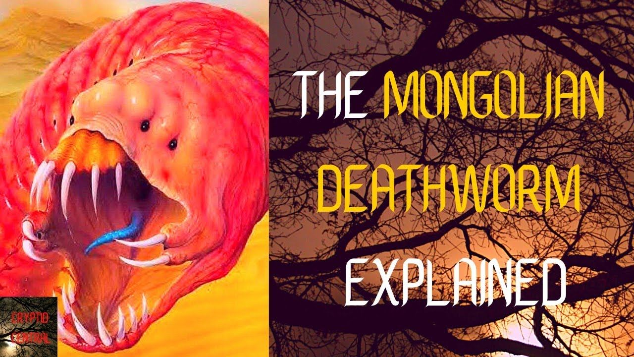 Download The Mongolian Death Worm - 2021 (Mini Documentary)
