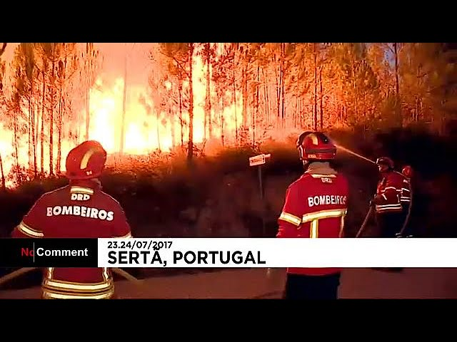 Fresh forest fires hit Portugal