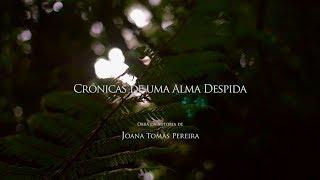capa de Crónicas De Uma Alma Despida de Joana Tomás Pereira