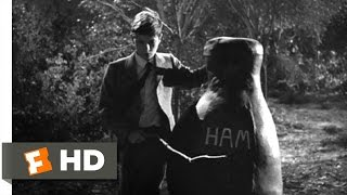To Kill a Mockingbird (9/10) Movie CLIP - Boo is a Hero (1962) HD