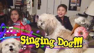 SINGING DOG!!! Plus a visit to Holey Cream NYC