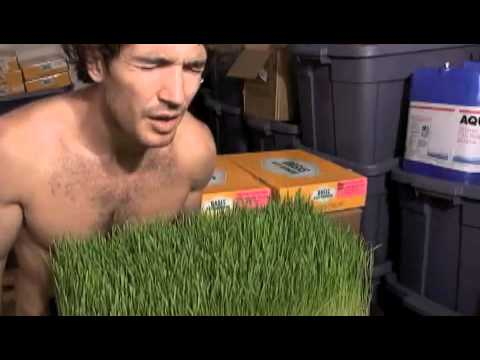 Ocean Mineral Wheatgrass...for the chickens.