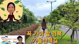 가을맞이 경북으로 단풍놀이 가즈아!!!!_포항편
