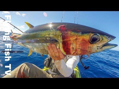 5 Sharks VS Kayaker | Shark Week | Kayak Fishing Hawaii | Flying Fish TV