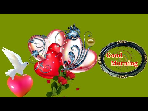 good-morning-video..-whatsapp..-message..-wishes..-greetings..-status..-quotes..-sms.-in-hindi.