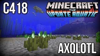C418 - Axolotl (Minecraft 1.13/Update Aquatic)