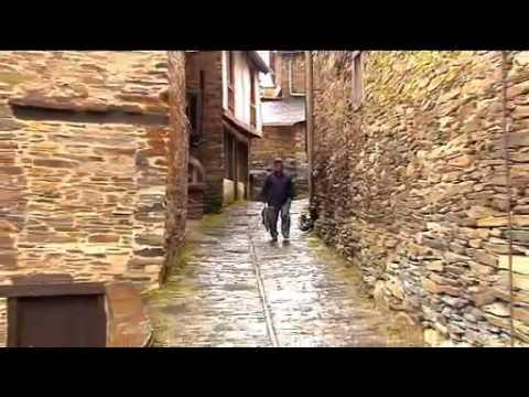 O urso volve ao Courel, Galicia / El oso pardo vuelve al Courel, Galicia