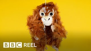 The 'deadly food' we all eat - BBC REEL thumbnail